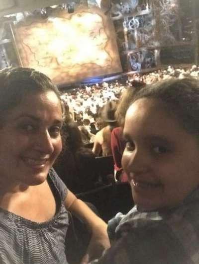 Gershwin Theatre, sección: Orchestra, fila: Y, asiento: 113
