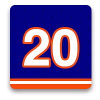 New York Islanders Fan